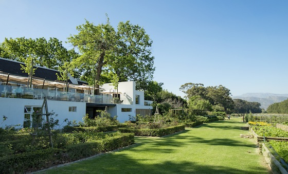 Farm to Table Dining at Boschendal's The Werf Restaurant
