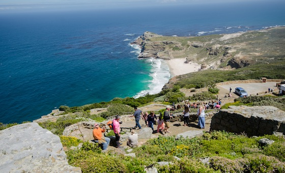 5 Ways to Captivate the Cape Peninsula