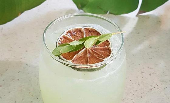 Lift Your Spirits at The Botanical Bar
